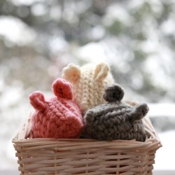 Woolly Meow Mouse